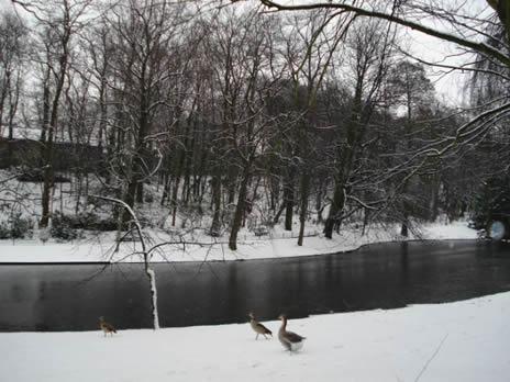Schaerbeek Parc neige 1
