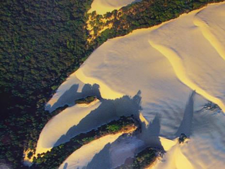 Schaerbeek dunes en Australie